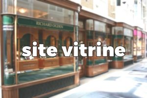 conception vitrine virtuelle Web - Cote d'Or - Bourgogne
